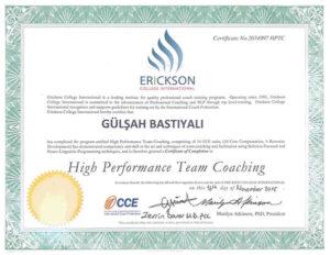 Yüksek Performanslı Takım Koçluğu sertifikası