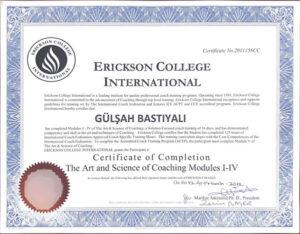 Erickson College International Sertifikası