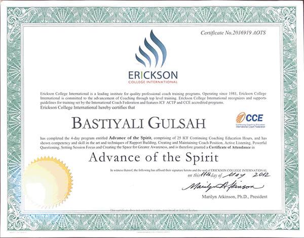 Erickson College - Bilinç Aşamaları Farkındalığı sertifikası