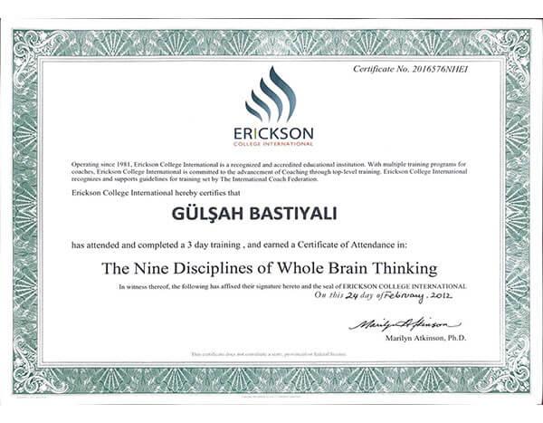 Erickson College International - Bütünsel Beynin 9 Alışkanlığı