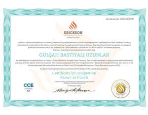 Erickson College International - Koçluk Bilinciyle Anne-Baba Olmak sertifikası